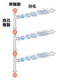 100809fig1.jpg